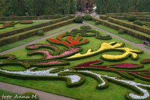 Kwietnik dywanowy w ogrodach pałacowych, Kromieryż, Czechy